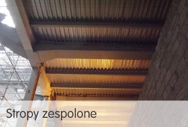 stropy-zespolone